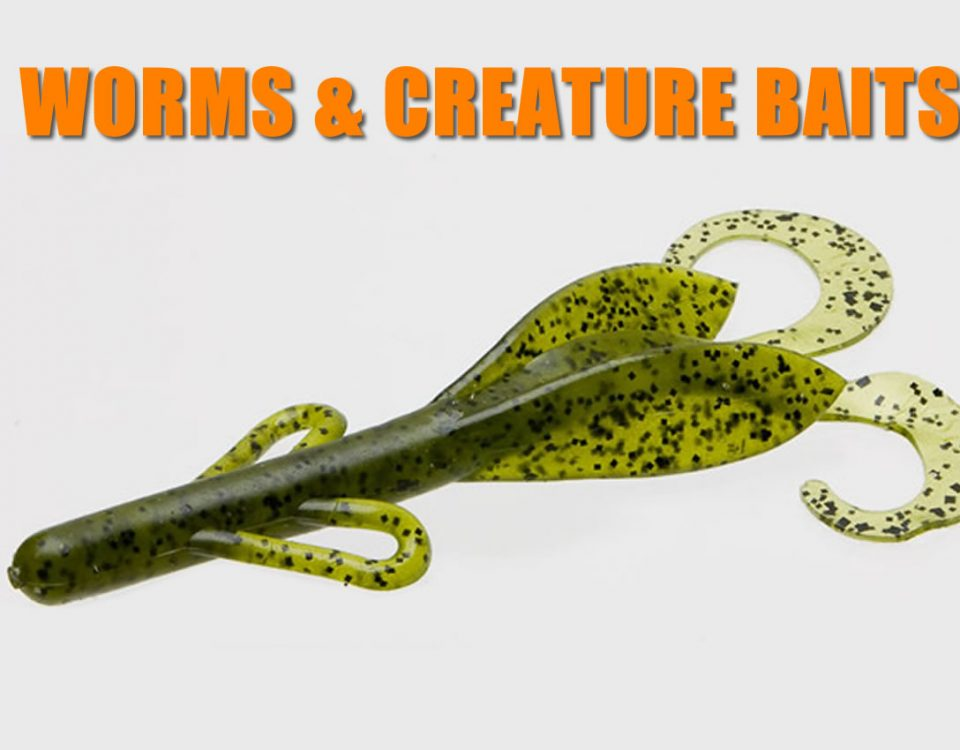 Soft Plastic Worms And Creature Baits