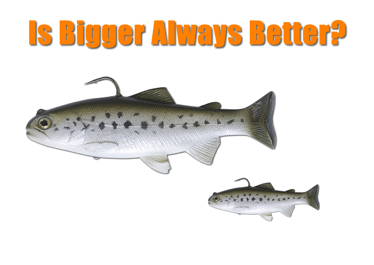 Big Lures vs Small Lures