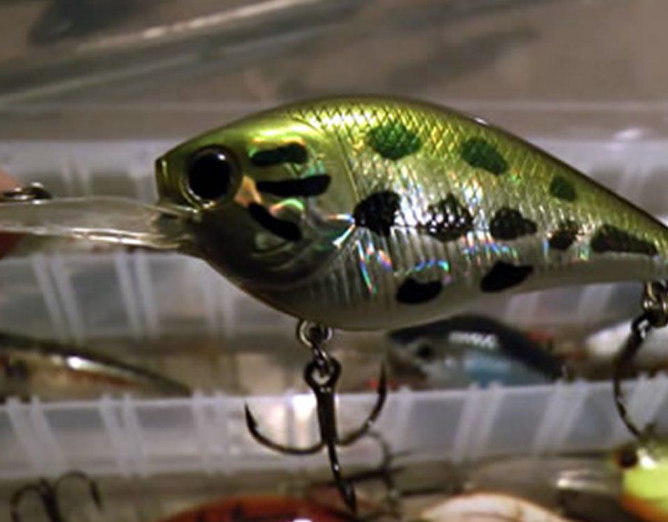 Crankbait Fishing Lures