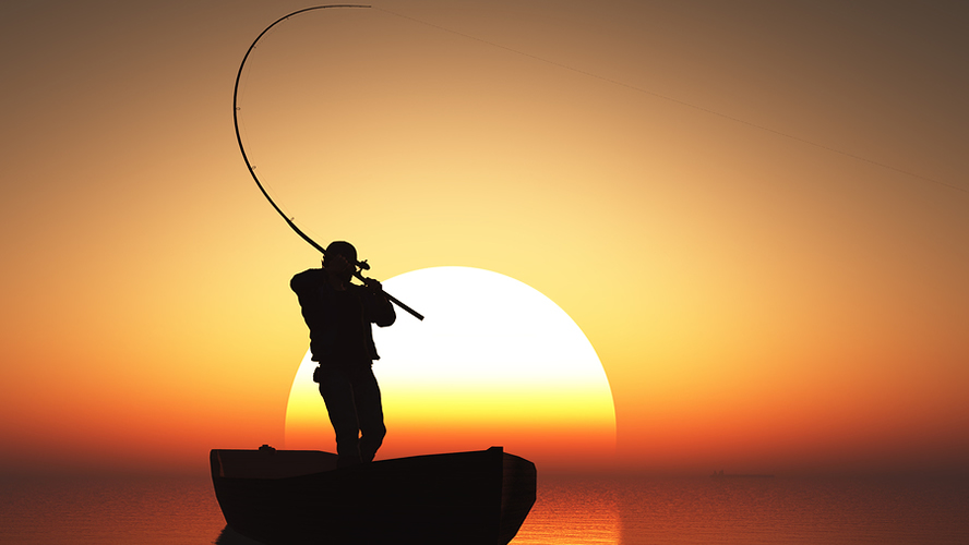 Bass Fishing At Night