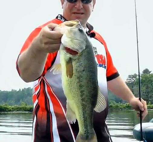 Post Spawn Bass