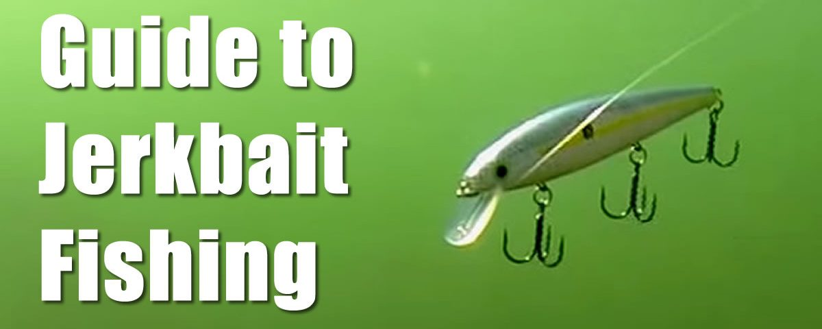 The Complete Guide to Jerkbait Fishing