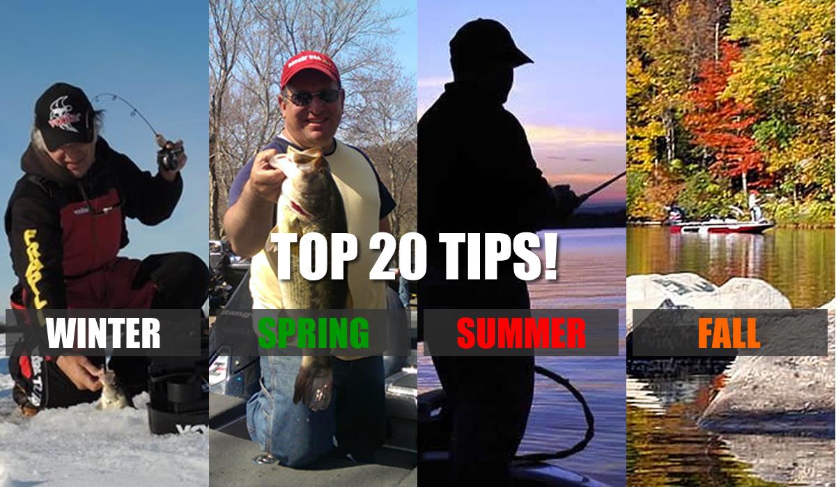 Bass Fishing Tips 4 Seasons