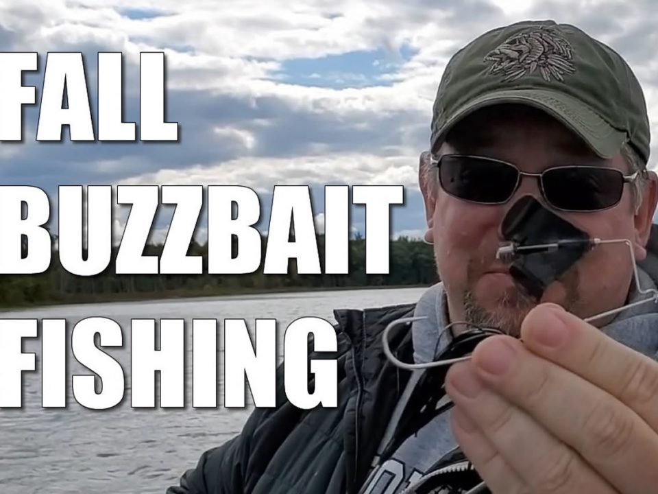 Fall Buzzbait Bass Fishing